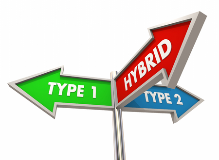 Hybrid Combining Two Types Between Combination Signs 3d Illustration Stock Photo