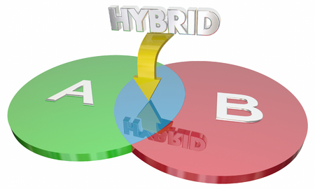 Hybrid Combining Two Different Circles Common Ground 3d Illustration Stock Photo