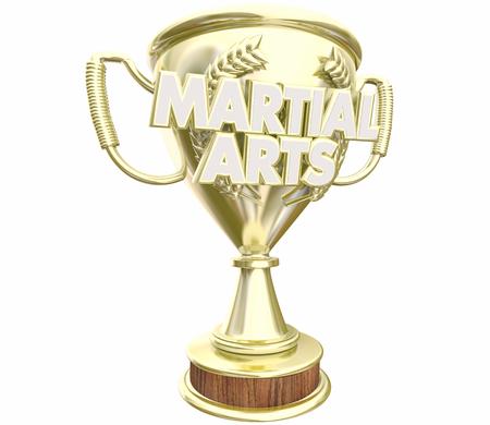 Martial Arts Trophy Top Prize Award 3d Illustration