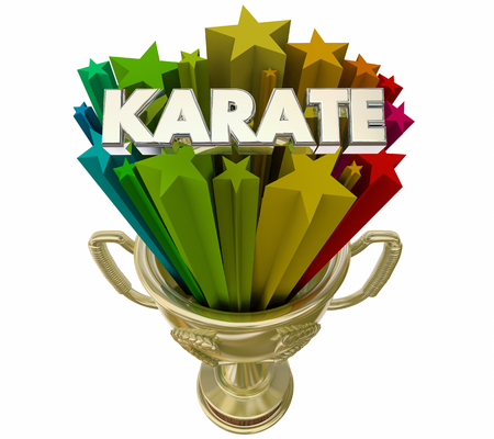 Karate Trophy Award Best Performance Score 3d Illustration