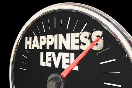 Happiness Level Gauge Ratingmeter 3d Illustration