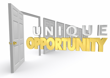 Unique Opportunity Chance Special Choice Option Door 3d Illustration Stock fotó