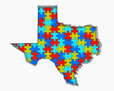 Texas TX Puzzle Pieces Map Working Together 3d Illustration