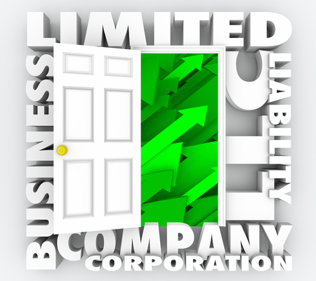 LLC Limited Liability Corporation Company Words 3d Render Illustration
