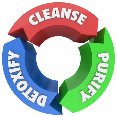 Cleanse Purify Detoxify Cycle Process Words 3d Render Illustration