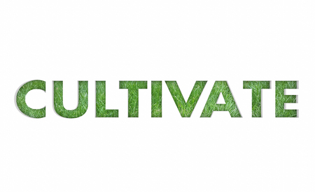 Cultivate Grow Expand Grass Growth Word 3d Render Illustration Standard-Bild - 102843438