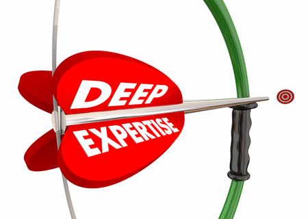 Deep Expertise Bow Arrow Target Experience Words 3d Illustration