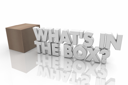 Whats in the Box Mystery Question Words 3d Render Illustration
