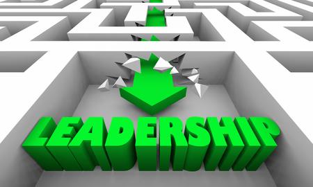 Leadership Management Vision Word Maze 3d Illustration