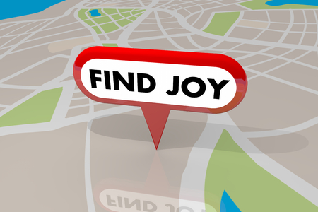 Find Joy Happiness Pleasure Satisfaction Map Pin 3d Illustration