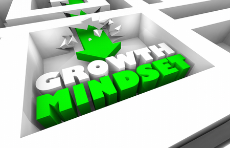 Growth Mindset Increase Success Maze Arrow 3d Illustration
