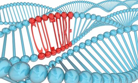 Culture DNA Strands Heritage Ancestry 3d Illustration