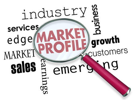 Market Profile Business Analysis Magnifying Glass Words 3d Illustration