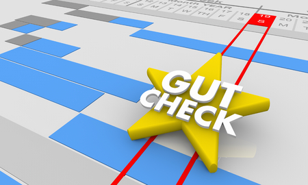 Gut Check Review Opinion Feedback Gantt Chart 3d Illustration