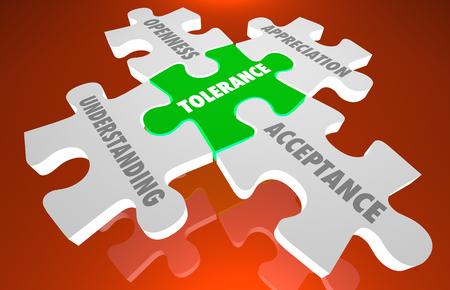 Tolerance Acceptance Oppenness Appreciation Puzzle Pieces 3d Illustration
