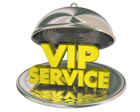 VIP Service Exclusive Treatment Dinner Platter Plate Words 3d Illustration