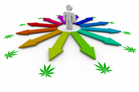 Person Arrows Point to Marijuana Pot Cannabis Questions Answers 3d Illustration Banque d'images