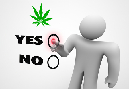 Marijuana Pot Weed Cannabis Legalize Ballot Measure Vote New Law 3d Illustration