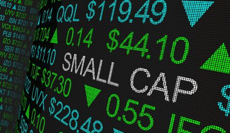 Small Cap Investment Category Stock Market Companies 3d Illustration.jpg