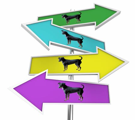 Dog Pet Animal SIgns Choices Directions 3d Illustration Stock Illustration - 128196487