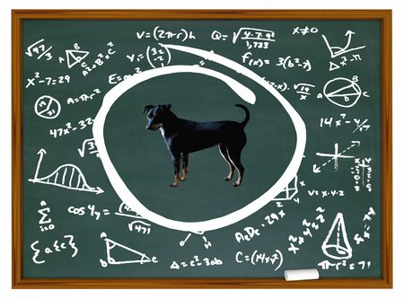 Dog Pet Animal Chalk Board Class Training Education 3d Illustration Stock Illustration - 128506802