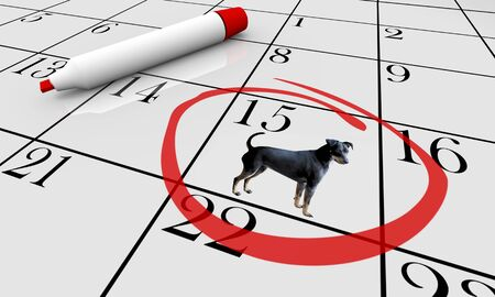 Dog Pet Animal Calendar Day Date Event Training Class 3d Illustration Stock Illustration - 128507206