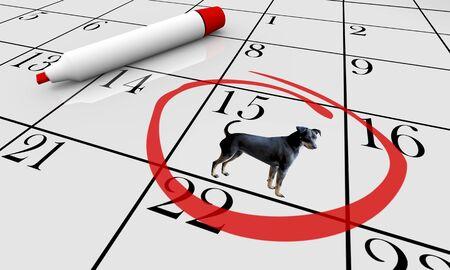 Dog Pet Animal Calendar Day Date Event Training Class 3d Illustration Stock Photo