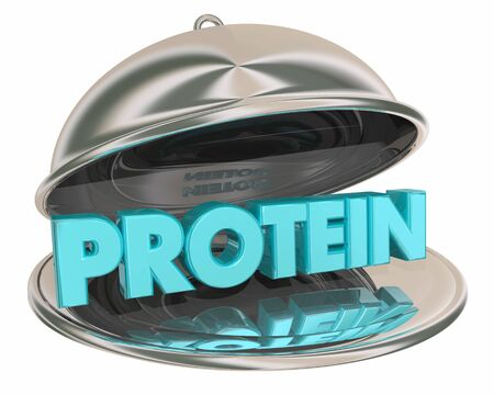 Protein Food Choice Platter Eat Healthy 3d Illustration Imagens