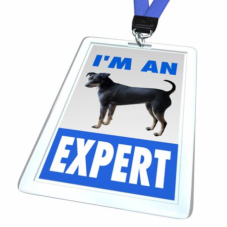 Im an Expert Dogs Pets Animals Badge Employee 3d Illustration