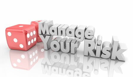 Manage Your Risk Dice Take Chance Reduce Danger 3d Illustration
