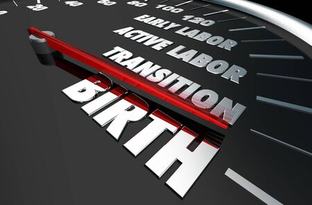 Birth Stages Early Active Labor Having Childbirth Baby 3d Illustration Stock Photo