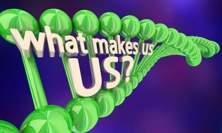 What Makes Ua Us DNA Secret Code Heredity Words 3d Illustration