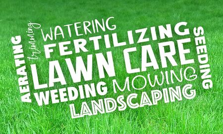 Lawn Care Service Landscaping Mowing Grass Trimming 3d Illustration