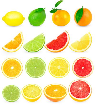 감귤류의 과일: citrus fruits