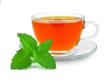 tea and mint photo