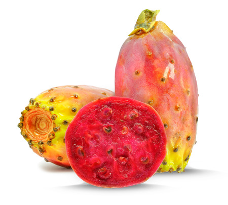 prickly pear 写真素材