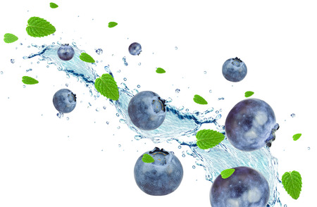 berry: blueberry and water splash isolated on white background
