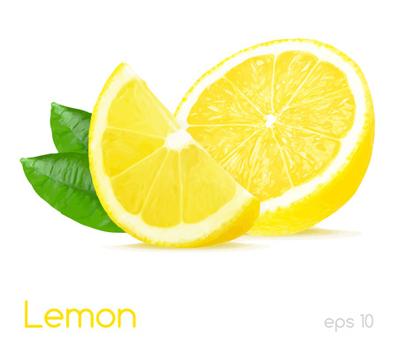 lemon illustration Çizim