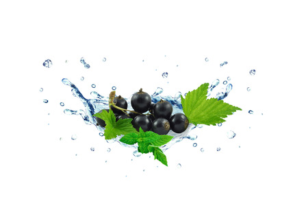 blackcurrant splash isolated on white background Stock fotó - 46398774