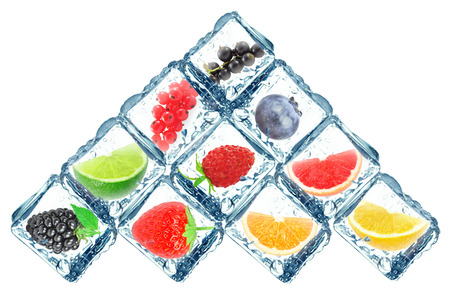 refrigerate: citrus fruits and forest in ice cubes isolated on white background