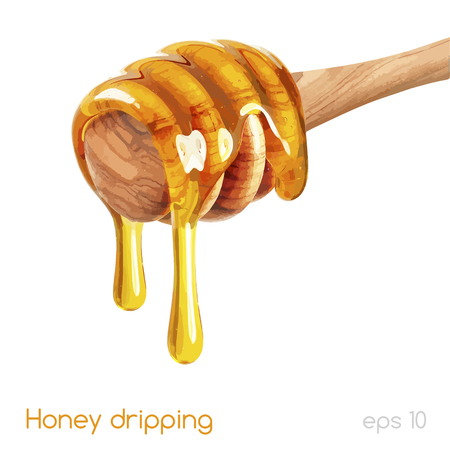 honey dripping isolated on a white background Illustration