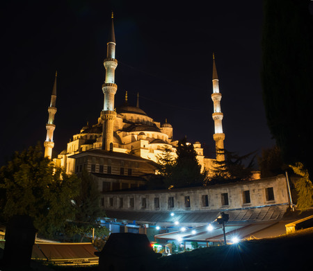 blue mosque: Night Istanbul. Blue Mosque