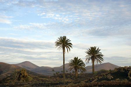 lanzarote: Landschap van Lanzarote, Canarische eilanden, Spanje