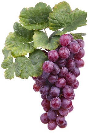wine and grapes: red wine grape, isolated  Stock Photo