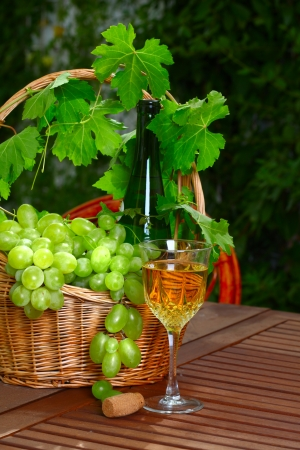 White wine bottle and bunch of grapes on background, glass with wine in summer garden photo