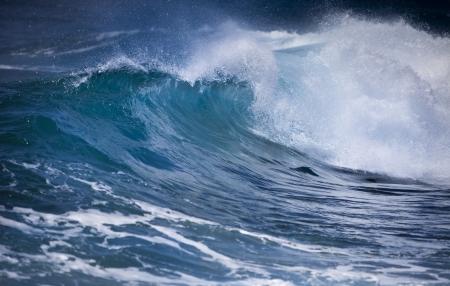 mare agitato: Ocean wave
