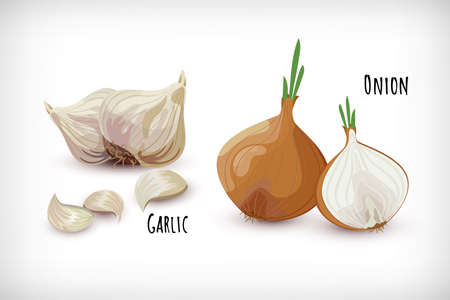 Set garden vegetables. Garlic cloves and onion in flat style. Vegetable organic eco bio farm product. Lettering Onion, Garlic. Spice plant condiment collection. Vector illustration.