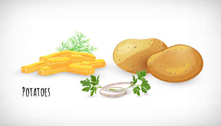 Potatoes set, whole, unpeeled, fried, homemade, onion rings, dill, parsley twig in flat style. Vegetable organic eco bio farm product. Potatoes lettering. Potato vegetable image. Vector illustration. Illustration