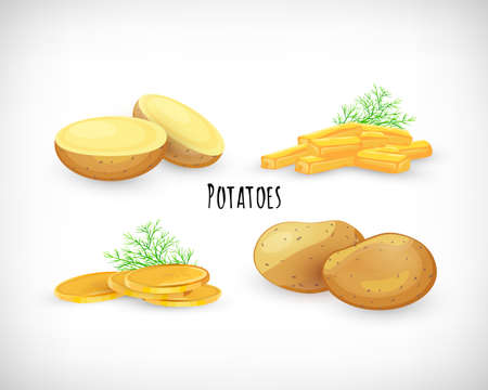 Potatoes set, whole, half, unpeeled, fried, homemade chips, dill twig in flat style. Vegetable organic eco bio farm product. Lettering Potatoes. Potato vegetable image. Vector illustration .