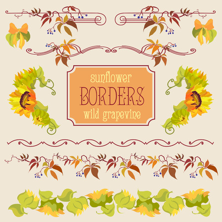 grapevine: Border elements set with sunflower and grapevine. Hand drawn vector line